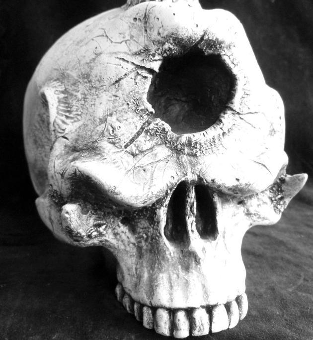 """神秘的""""独眼巨人""""真实存在吗?这是人们认为的独眼巨人头骨。"""