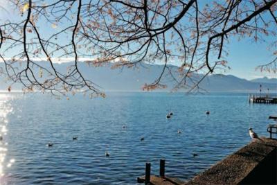 学会这3招 拍摄精彩纷呈的湖面水景