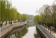 长虹公园 恍惚在江南水乡