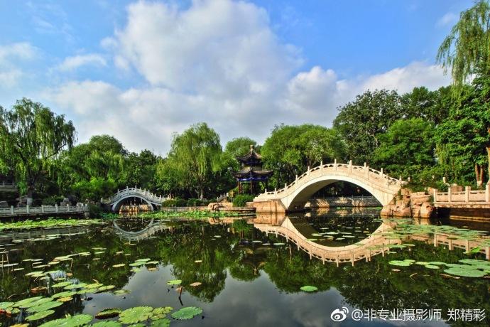 身处西沽公园似在江南水乡