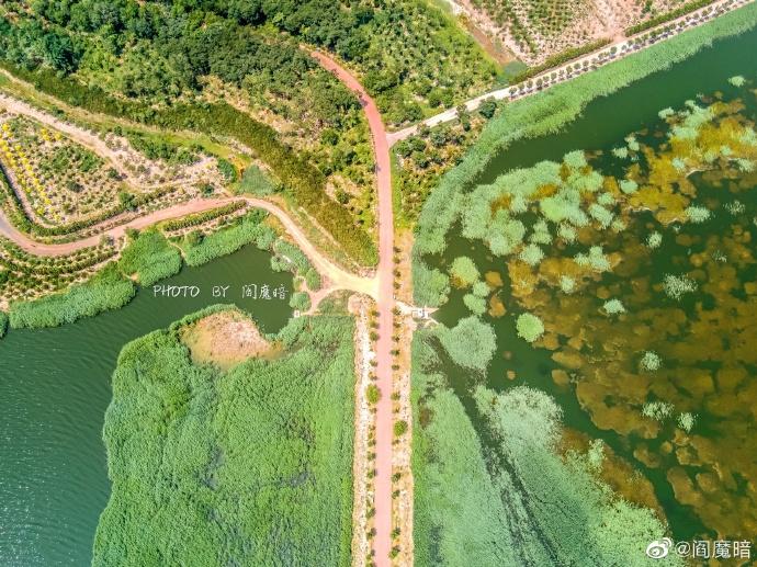 航拍天津绝美官港湿地,每一张照片都像一幅特别的画!