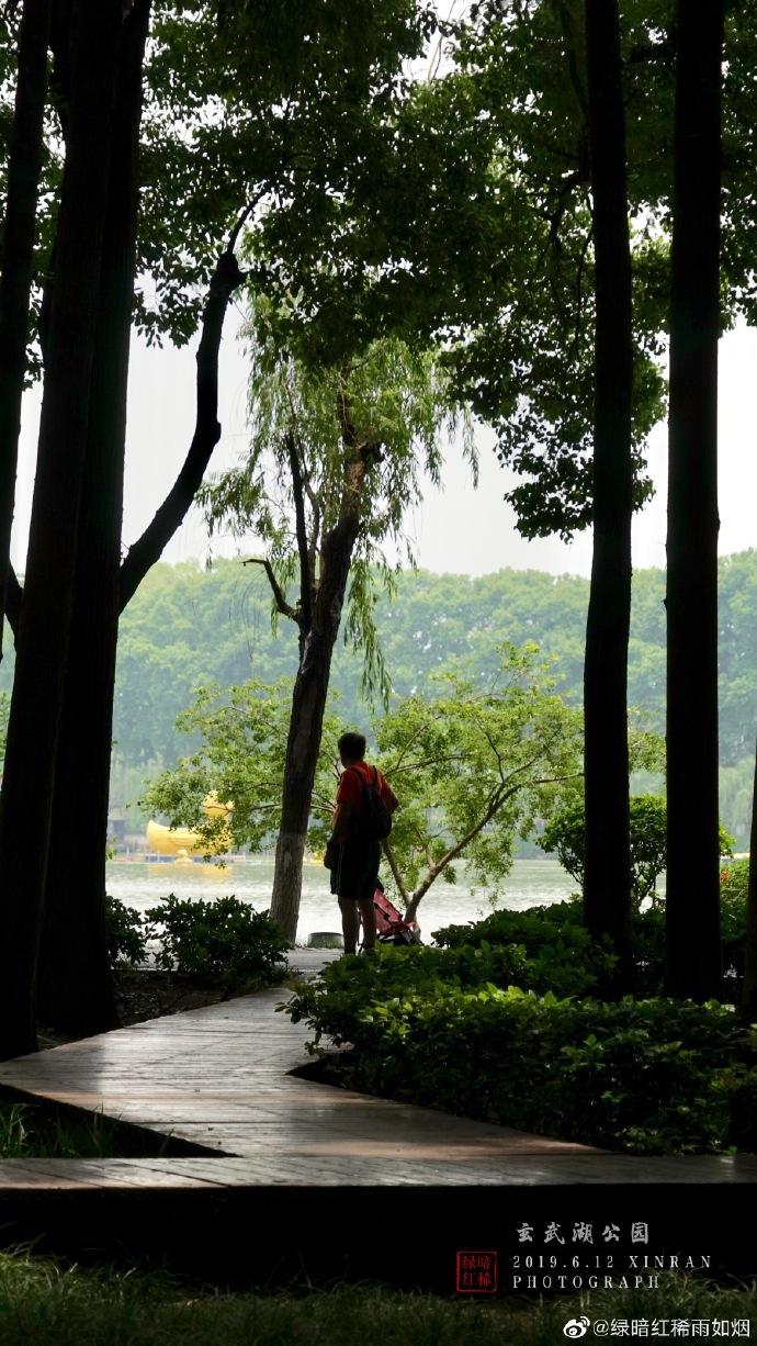 南京玄武湖满园风光