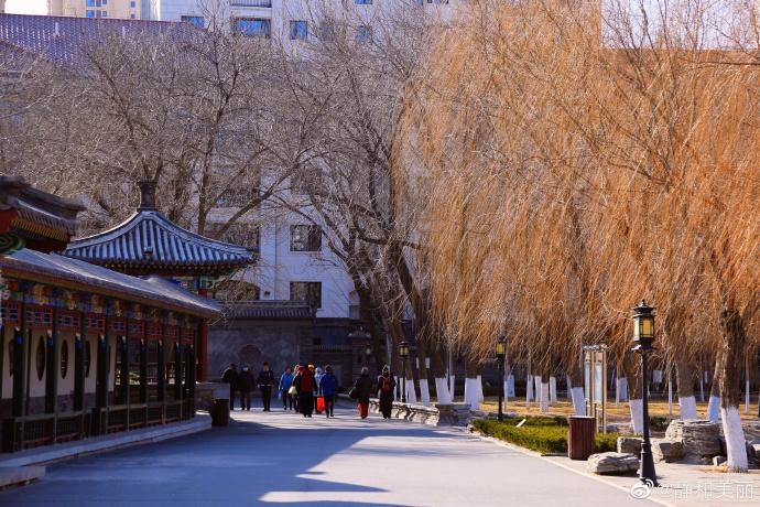 北宁公园冬日景色