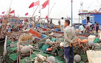 渤海湾春季开海 海鲜将大量上市