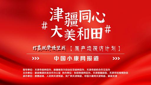 【携手奔小康 天津进行时】国际陆港——产业集群拓新路