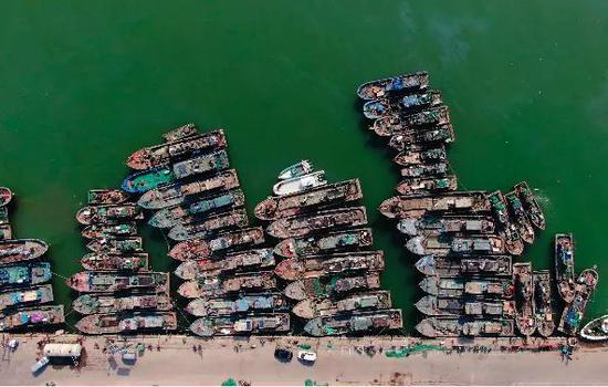 今年休渔期定了!爱吃海货的天津人抓紧了……