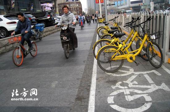 共享单车停放在指定区域内