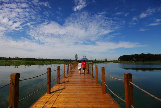 天津新添一个森林公园!这个国家公园也要变样