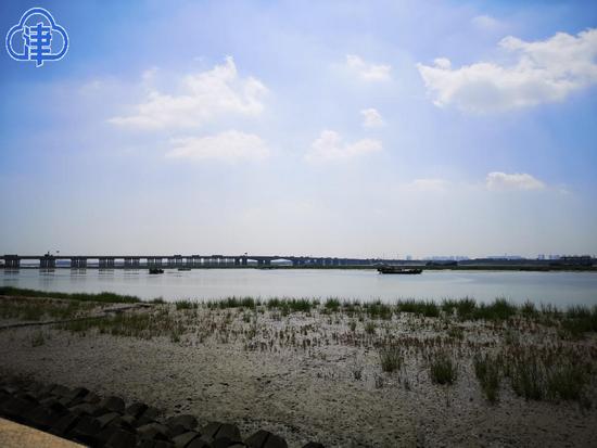 天津海岸线景观改善 市民多了亲水、看水平台