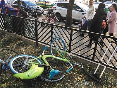 昨日,知春路,一辆酷骑单车被遗弃在花坛里。新京报记者 浦峰 摄