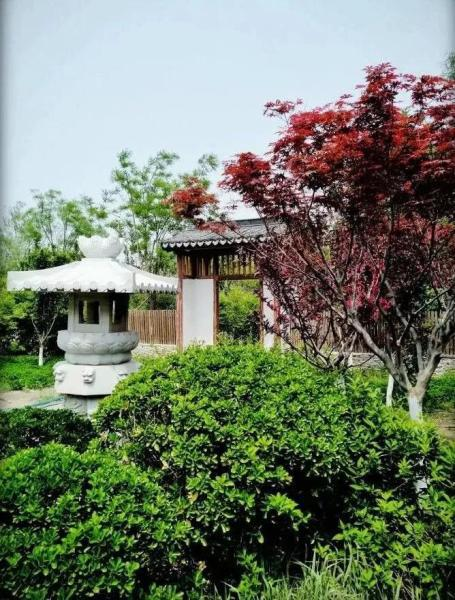 本市又一座苏式园林建筑——问津园全部完工,即将对外开放。
