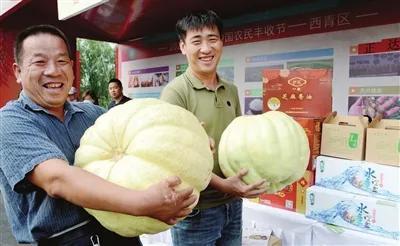 """2020年天津市""""中国农民丰收节""""在宝坻区八门城镇欢喜庄园拉开帷幕。"""