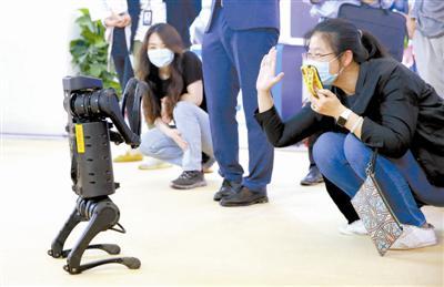 可爱的机器狗与观众互动