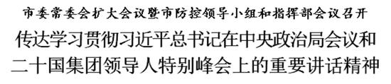 传达学习贯彻习近平总书记在中央政治局会议和二十国集团领导人特别峰会上重要讲话精神