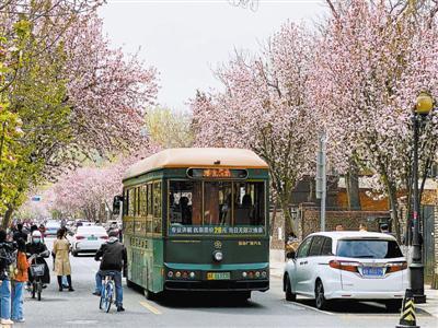 连日来,本市多个旅游景点的海棠花相继绽放,景色宜人,吸引了不少游人纷纷前来赏花观景。