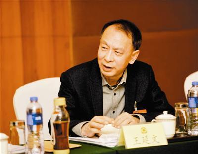 市政协委员王延文发言。