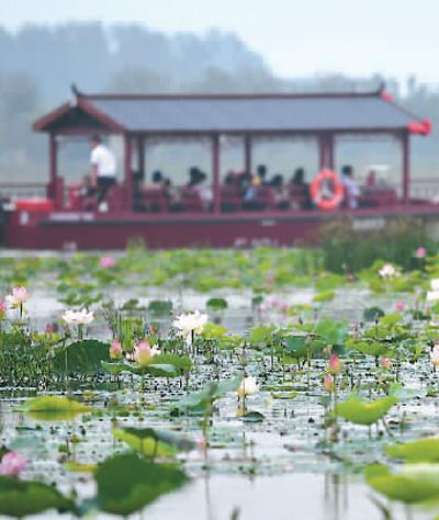 7月18日,游船在天津曙光水镇内航行。新华社记者 李 然摄