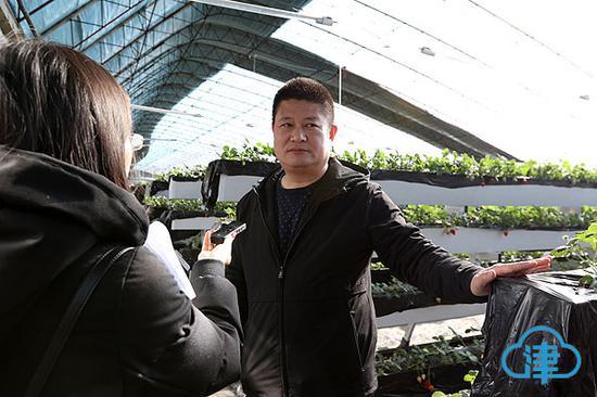 天津市国林食用菌种植合作社理事长陈国华