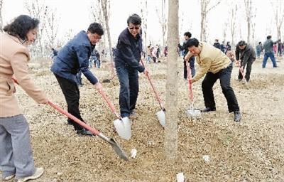 昨天是我市第36个全民义务植树日,全市共组织干部群众、驻津部队、武警官兵7500余人开展义务植树活动,栽种树木62000余株。