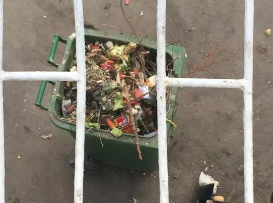 小长假这几天每天从熊山清理的投喂垃圾约1000斤