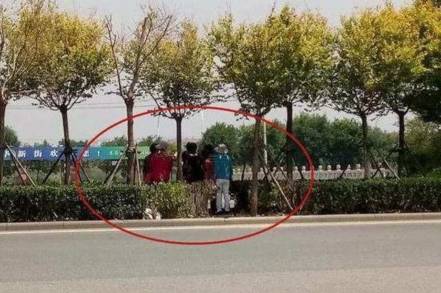 天津连发多起横穿马路被撞身亡案