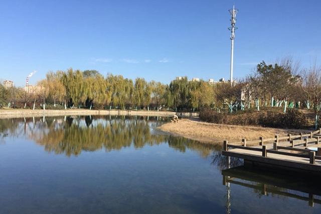 南翠屏公园水体生态修复 已达到三类水饮用标准