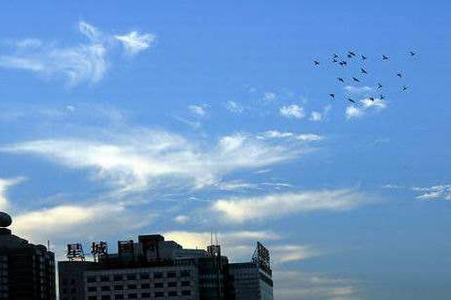 天津公布10月份环境空气质量达标天数22天
