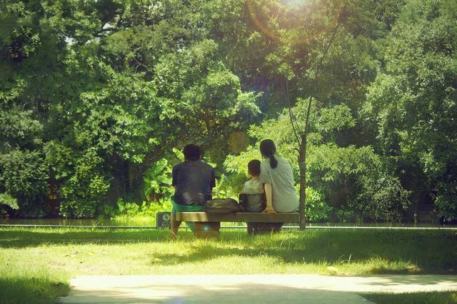 天津市最大保障房片区公园 预计年底交付使用