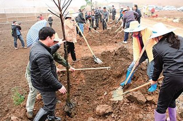 天津市今春植树造林14万亩完成全年任务的40%