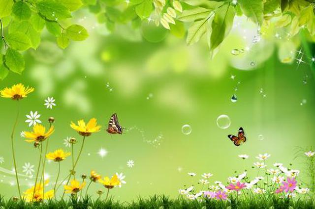天津开展40天春季环境卫生清整