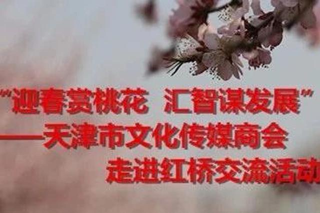 """红桥区政府与市工商联联合举办""""迎春赏桃花  汇智谋发展"""" 天"""