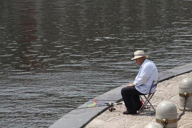 违法捕鱼现捞现卖 亲水平台成鱼市快来管管