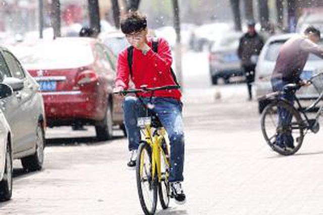 天津4月迎来柳树繁殖季节 今年本市多招对付飞絮