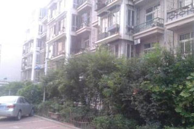 塘沽锦绣园小区旧楼改造施工队 竟在绿地建旱厕