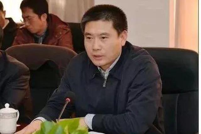 徐大彤任武清区委书记