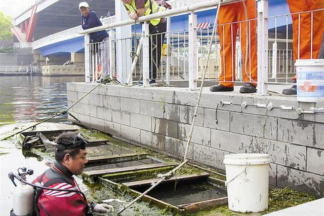 海河废弃木船存隐患 两部门合力进行清理