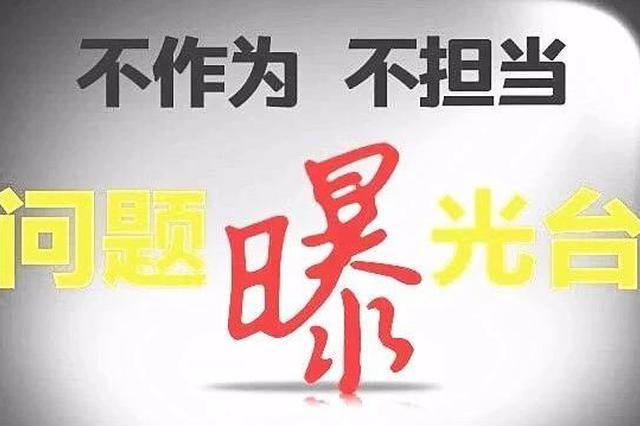 严肃查处 天津通报4起不作为不担当问题
