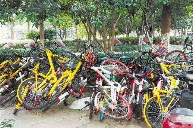 治理共享单车乱停放 维护城市交通秩序