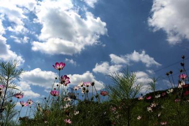秋分第一周最高气温25 ℃ 周末大风来降温