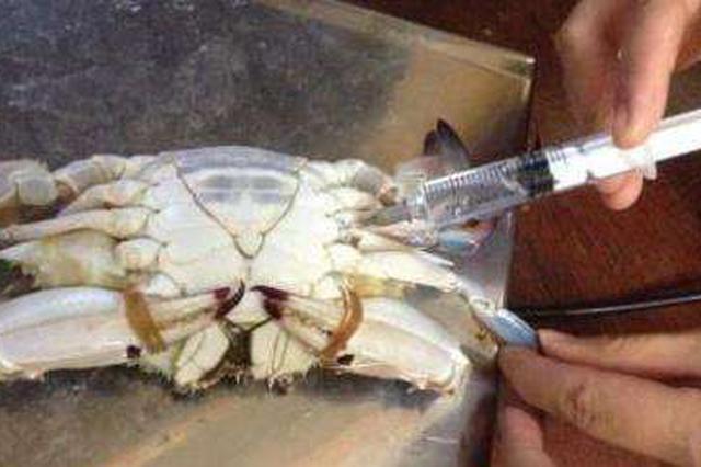 """螃蟹""""注水注胶""""?谣言!注射会加速死亡"""