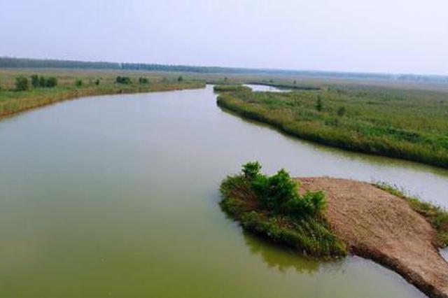 企业关停、村庄搬迁 大黄堡湿地生态正逐步恢复