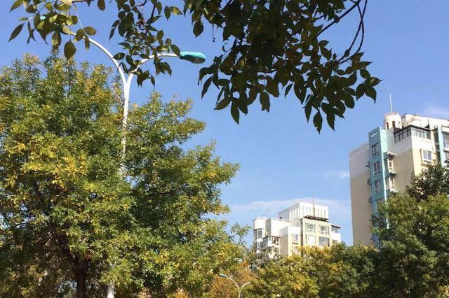 恭喜!大天津获9-11月蓝天出镜率最高的城市之一