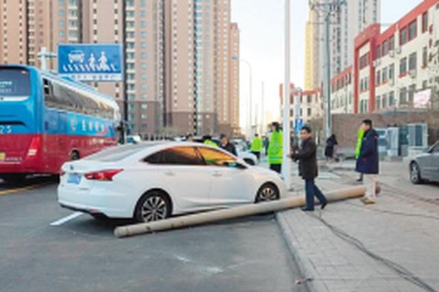 天津一客车挂倒线杆砸伤两名学生 事故原因调查中(图)