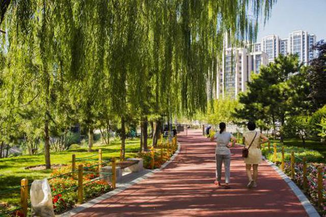 友谊路至卫津南路段 提升改造绿道公园
