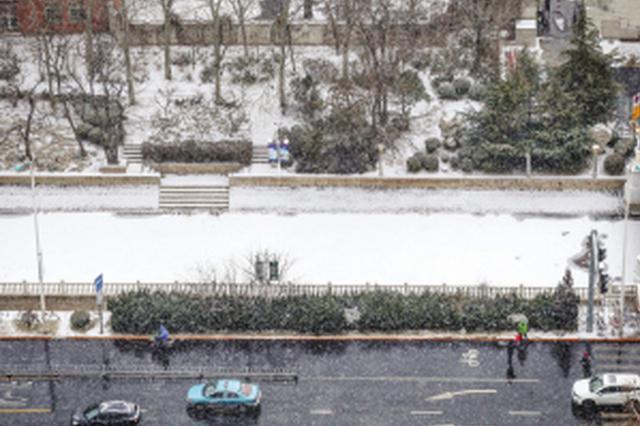 """""""七九""""为何雪纷纷?津城雪后迎大风周末气温回升"""