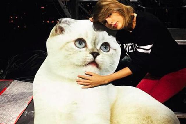 霉霉爱猫6.5亿身家登宠物富豪榜第三 第一名是它