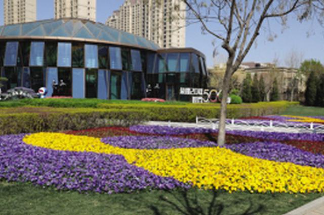 精品花坛五·一亮相津城 花色繁茂呈现最佳效果