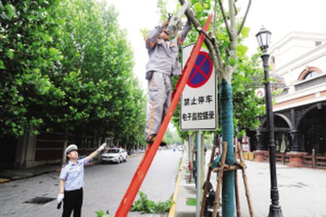 """天津20处""""躲猫猫""""信号灯标志牌终于""""露脸""""啦"""