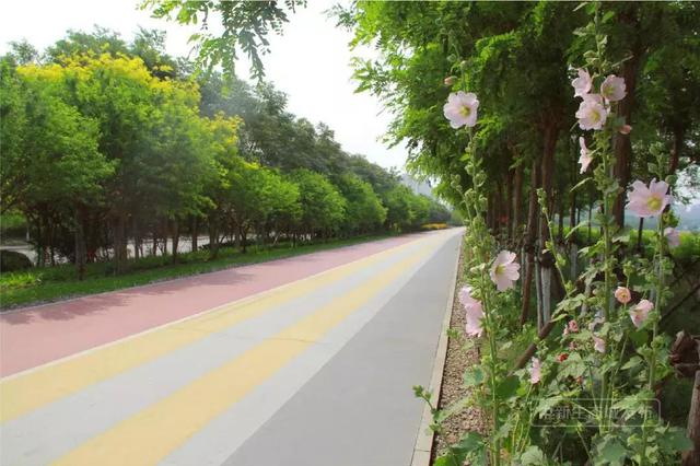 """天津最美""""沿河步道""""贯通 赶快去打卡"""