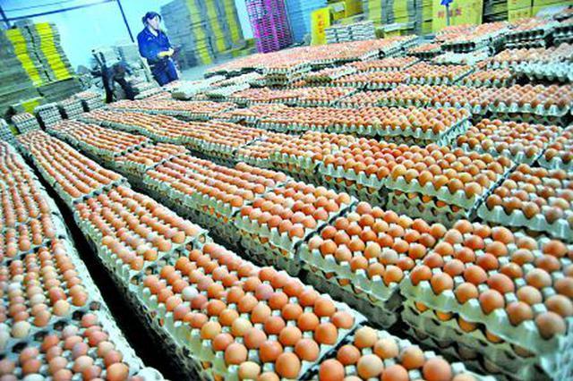 津城肉蛋价格有所上涨